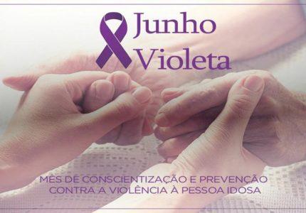 Criai apresenta projeto de lei para instituir o Junho Violeta