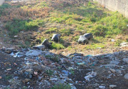 Lotes abandonados ainda são um problema em Guarapuava