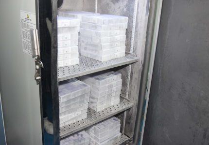 5ª Regional de Guarapuava receberá 5.328 novas doses da vacina Pfizer